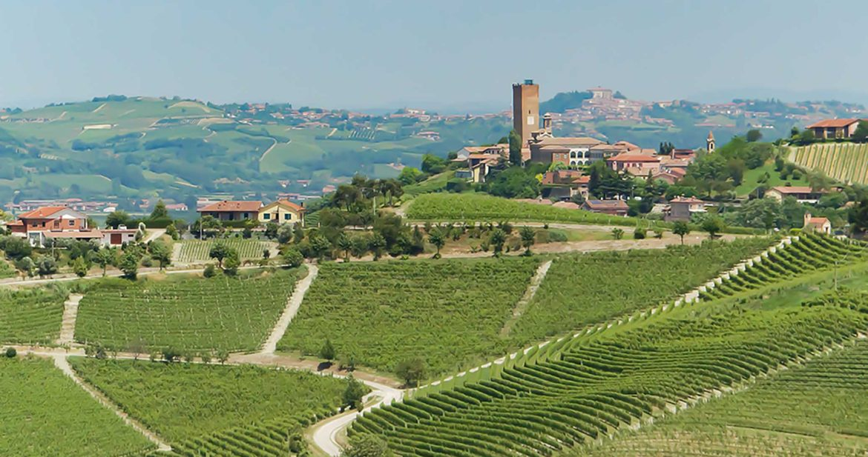 Piedmont Main Image